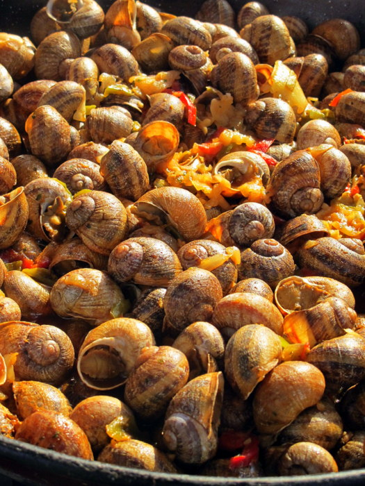 Snails – Tempting Food in France