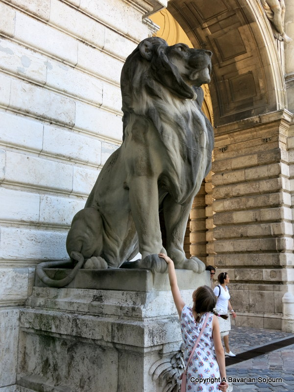 Sunday Photo – Meeting the Locals – Budapest