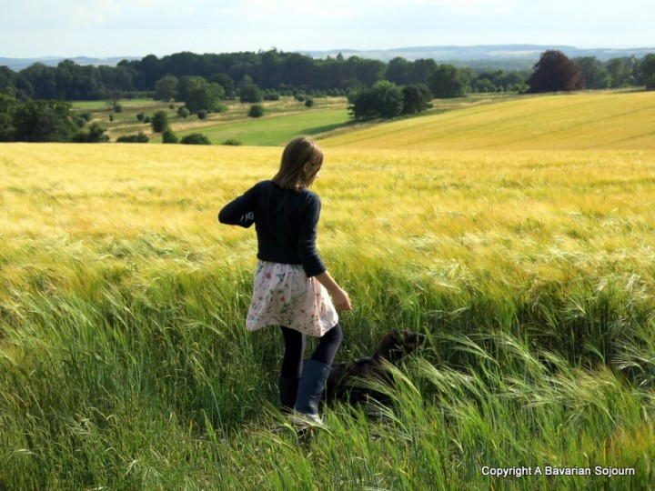 Sunday Photo – My Green and Pleasant Land