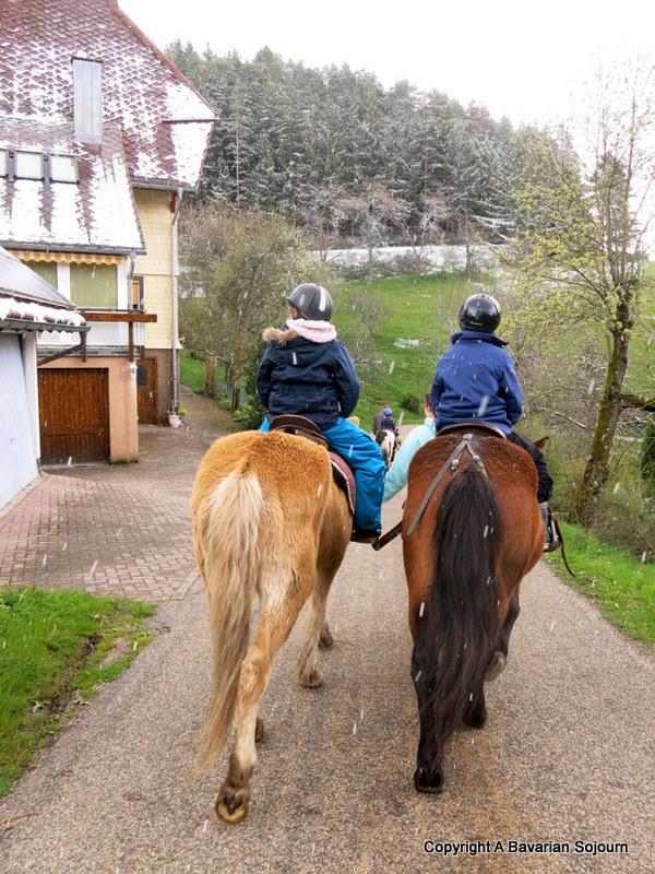 hilserhof horseriding