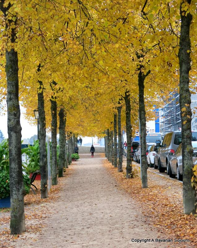 Autumn in Regensburg