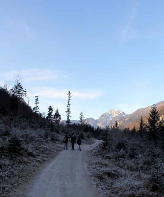 Sunday Photo – Winter Wonderland