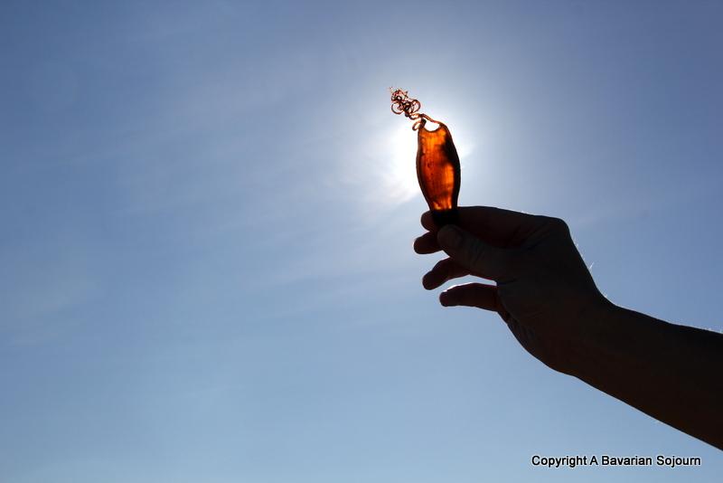 Sun Purse