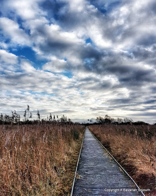 Sunday Photo – Winter Skies Wicken Fen