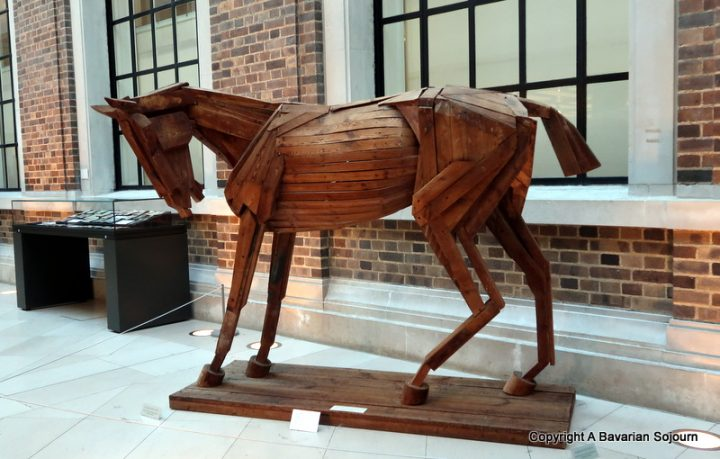 fitzwilliam horse