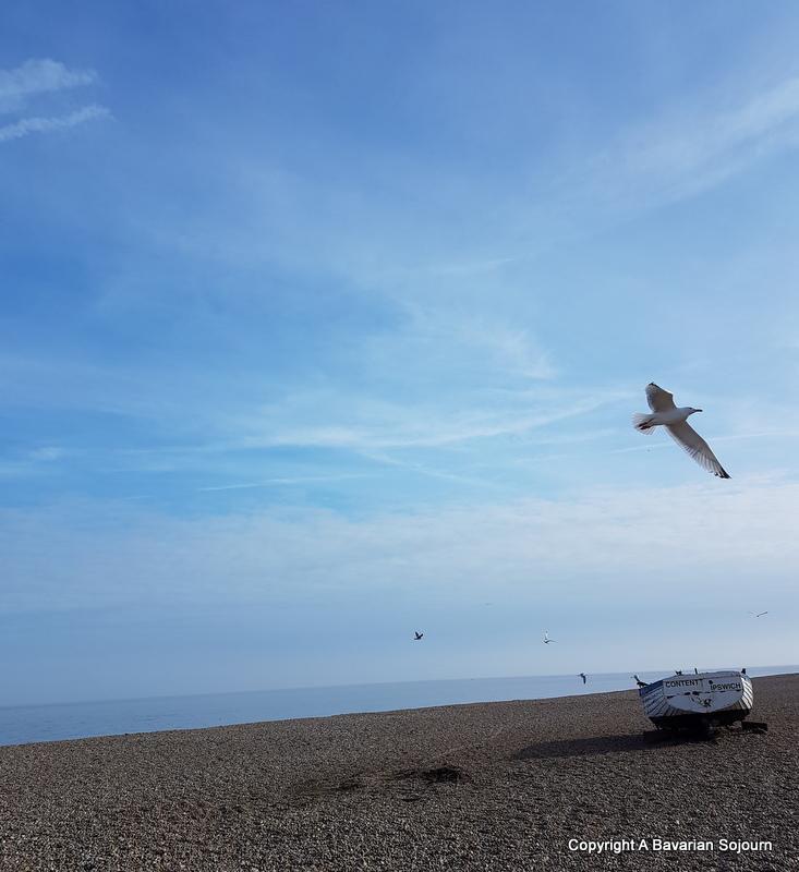 seagull aldeburgh