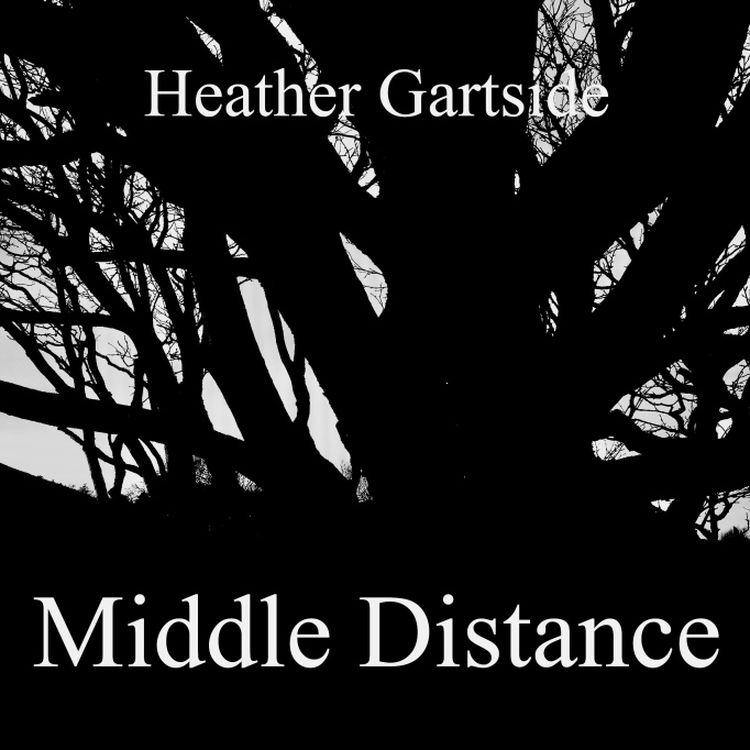 Middle Distance Book Cover
