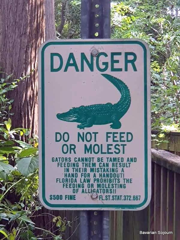 alligator sign florida
