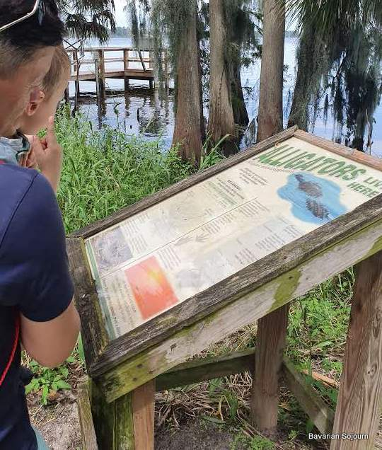 Alligator Warning Sign Circle B Wildlife Reserve
