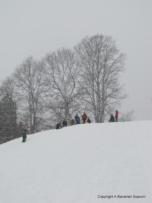 Sledging Saturday (a trip to Wallberg)