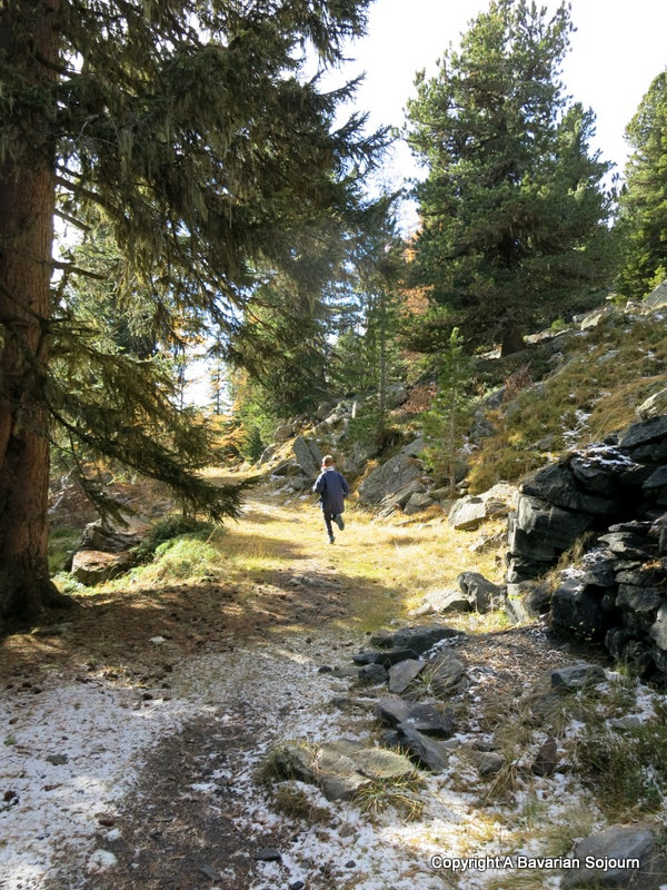 Log Cabin Life – Carinthia