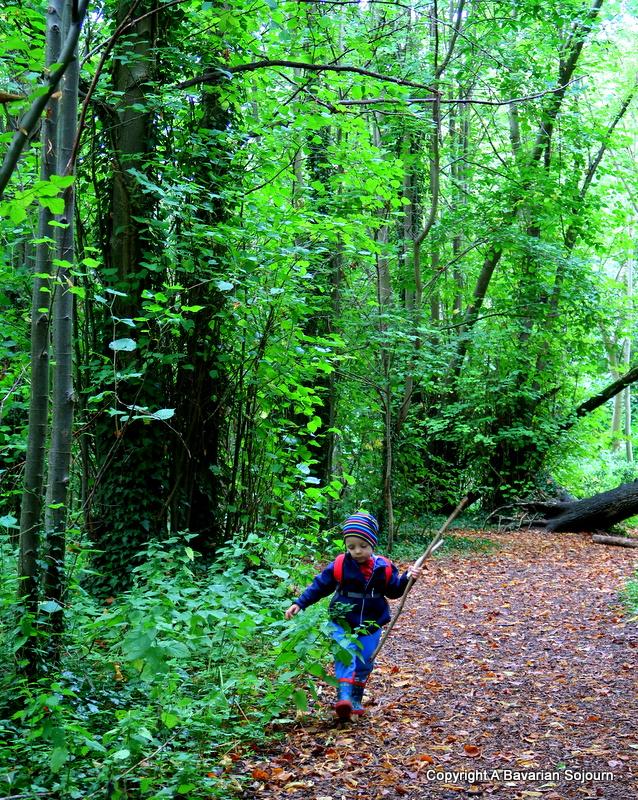 Sunday Photo – Wild Man of the Woods