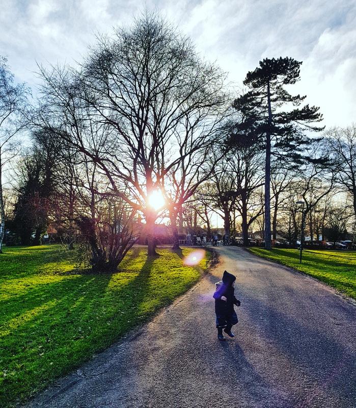 Sunday Photo – English Winter Sun