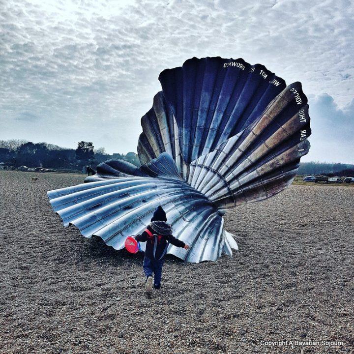 Sunday Photo – The Scallop Shell