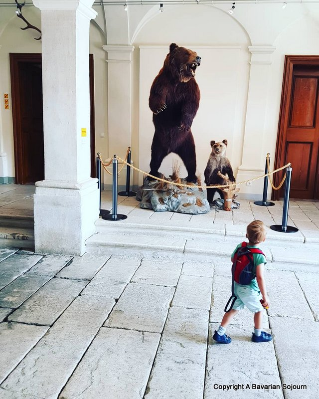 The Three Bears at Castle Wolfsthurn?