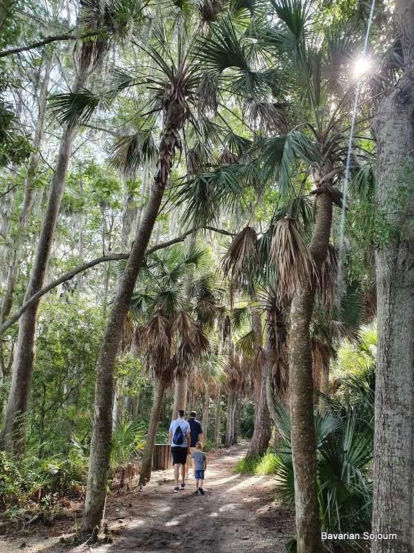 state park walking florida