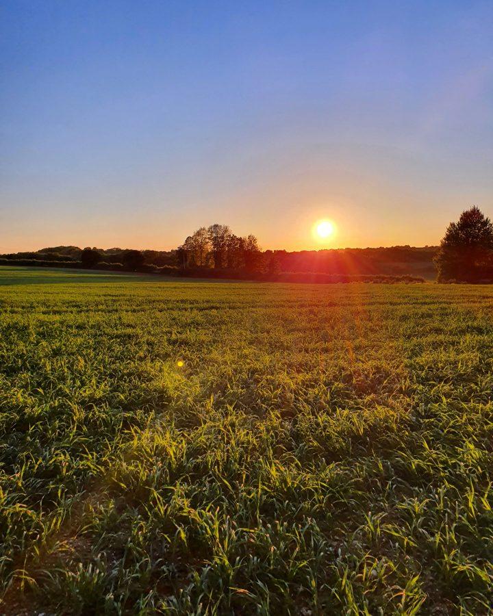 Hampshire Sunset