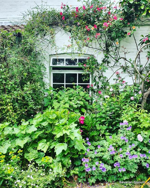 Mum's House
